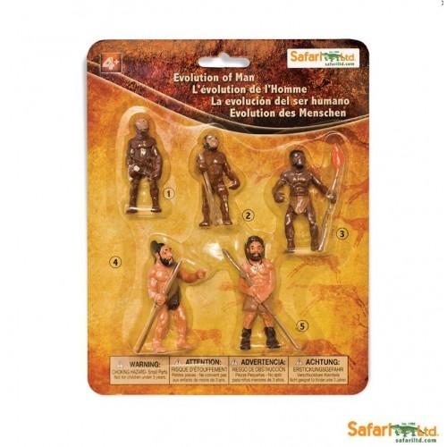 Vývoj člověka - Safari Ltd Safariology