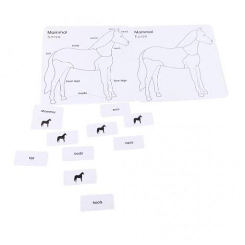 Englisch Karte Puzzle - Pferd