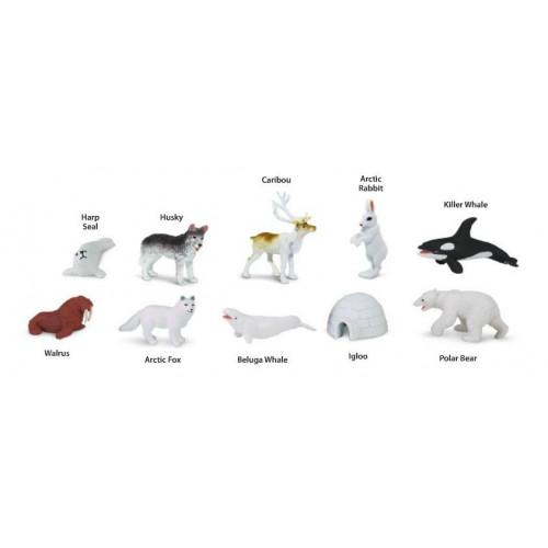Arktida - tuba Safari Ltd
