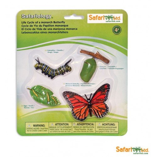 Vývoj motýla - Safari Ltd Safariology
