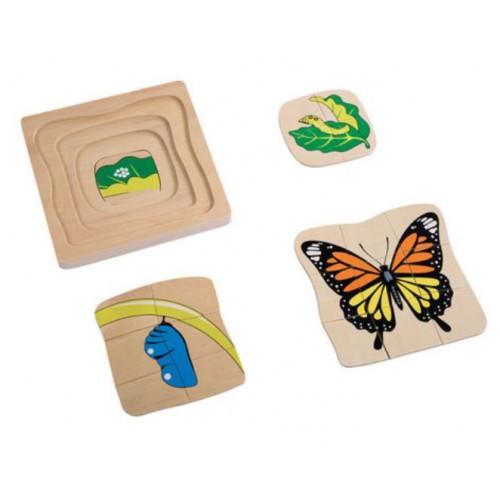 3D Puzzle vývojová stádia - motýl