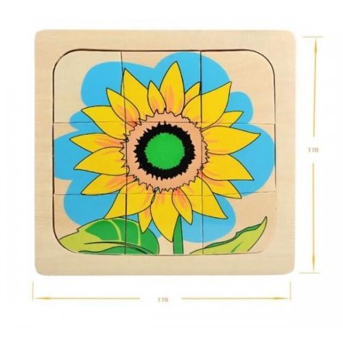 3D Puzzle vývojová stádia - slunečnice