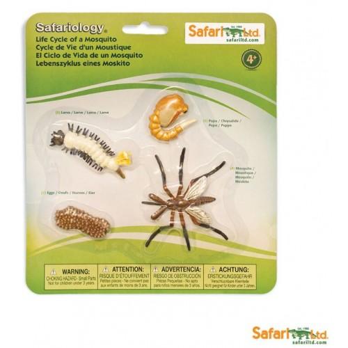 Vývoj komára - Safari Ltd Safariology