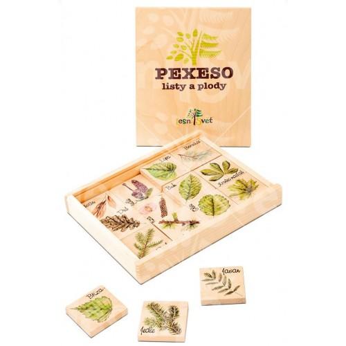 Malé edukační pexeso - listy a plody